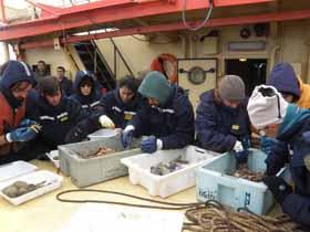 <i>Buque Oceanográfico Puerto Deseado, 27 de febrero de 2011.Isla Decepción, puerto Foster;Archipiélago Shetland del Sur</i><br><br>